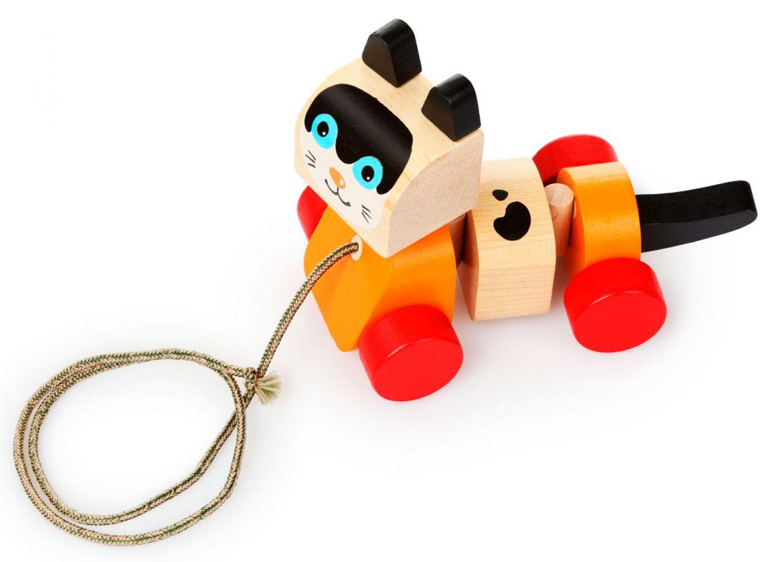 Walk-a-long toys